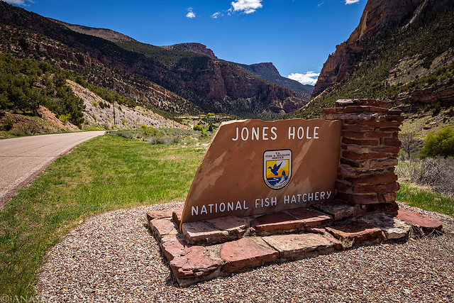 Jones Hole National Fish Hatchery Sign
