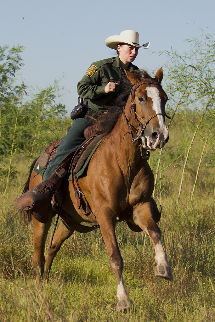South Texas Border Patrol Agents from the McAllen Horse P