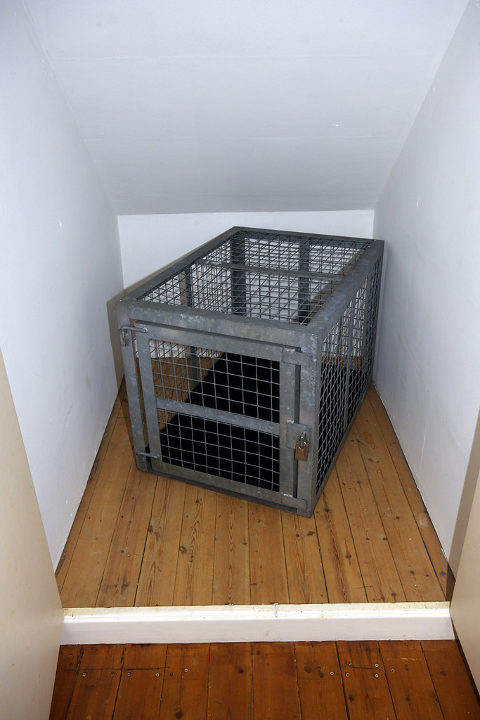 My cage  in its cell  My steel cage has been moved