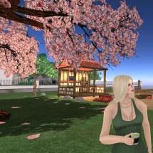 Tea In Garden Gidge