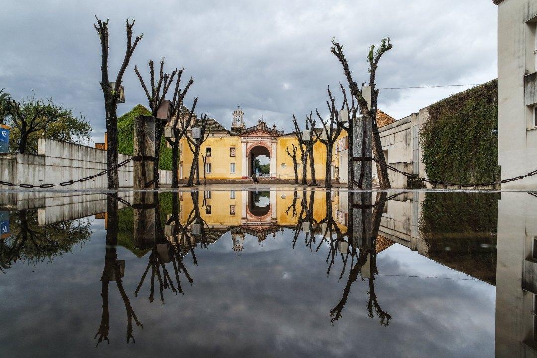 Monastero de la Cartuja (Siviglia)