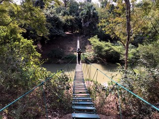 hanging bridge over green river in niokolo koba national park