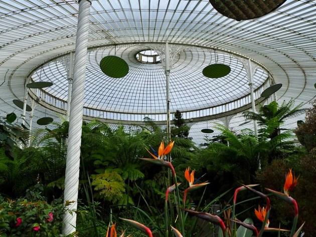 Glasgow Botanical Gardens