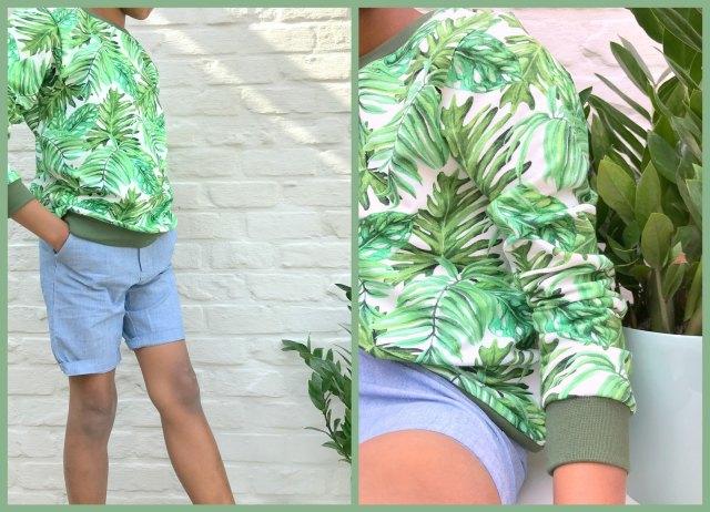 botanical boy (collage1)