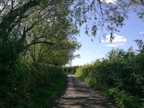 Dunham Massey Walk