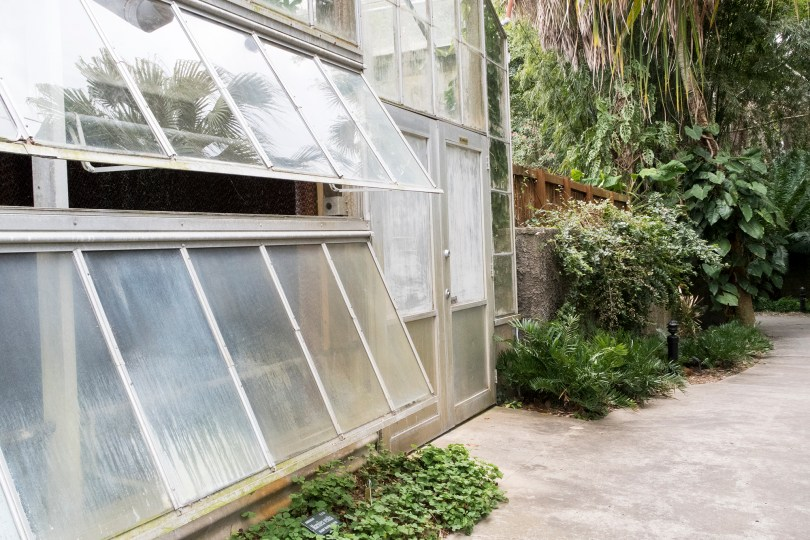 selby-botanical-gardens-greenhouse