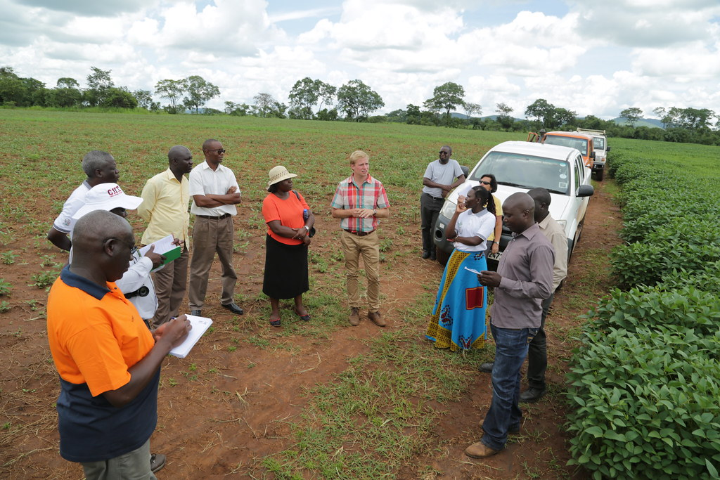 Africa RISING management team delegation in Zambia during a visit to Good Nature Seed Ltd., which is multiplying breeder seed as part of the project's activities aimed at improving the legume seed delivery systems in Zambia