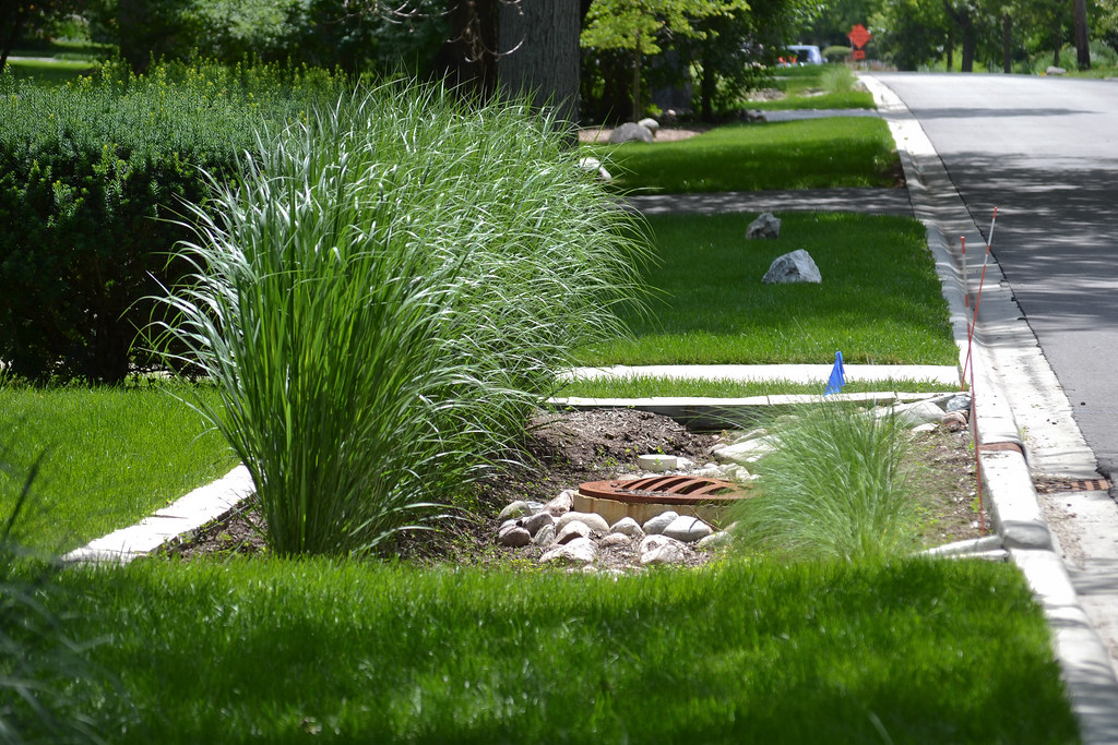 Stormwater Management in Hinsdale IL  One neighborhood