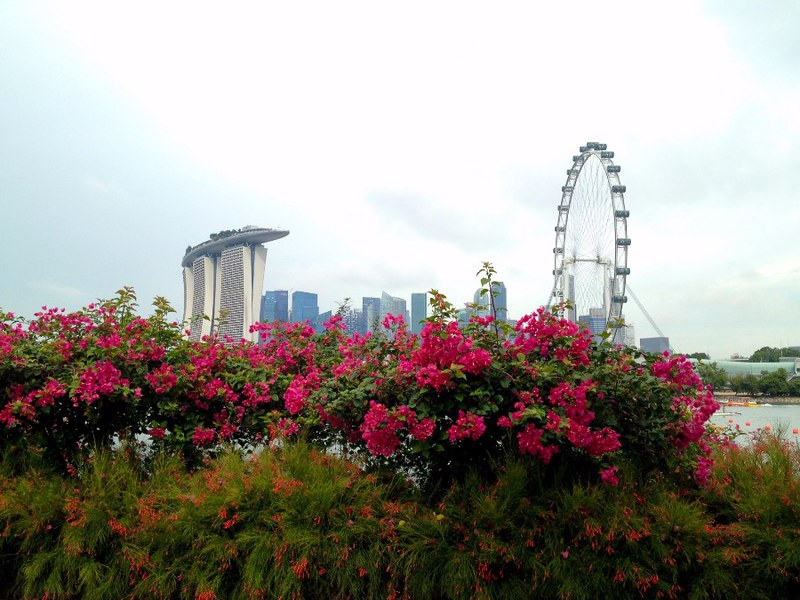 great view of singapore