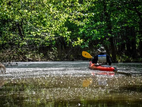 Dyar Pasture and Lake Oconee-45