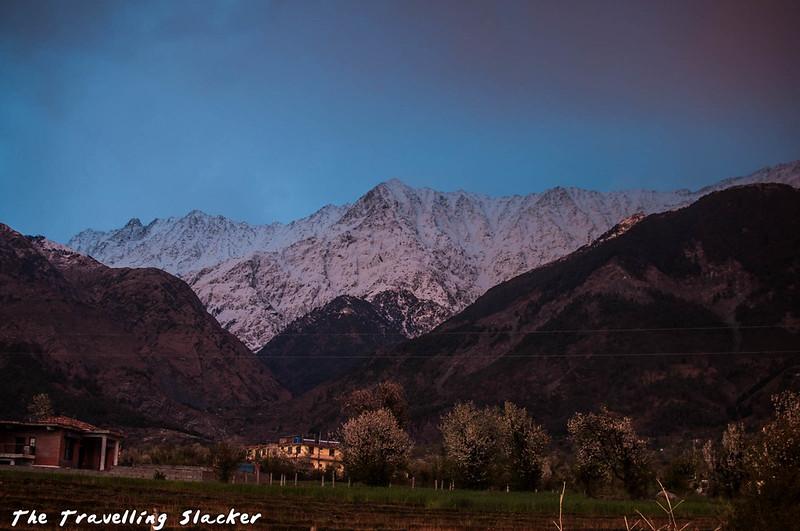 Sidhpur-Zen Valley (40)