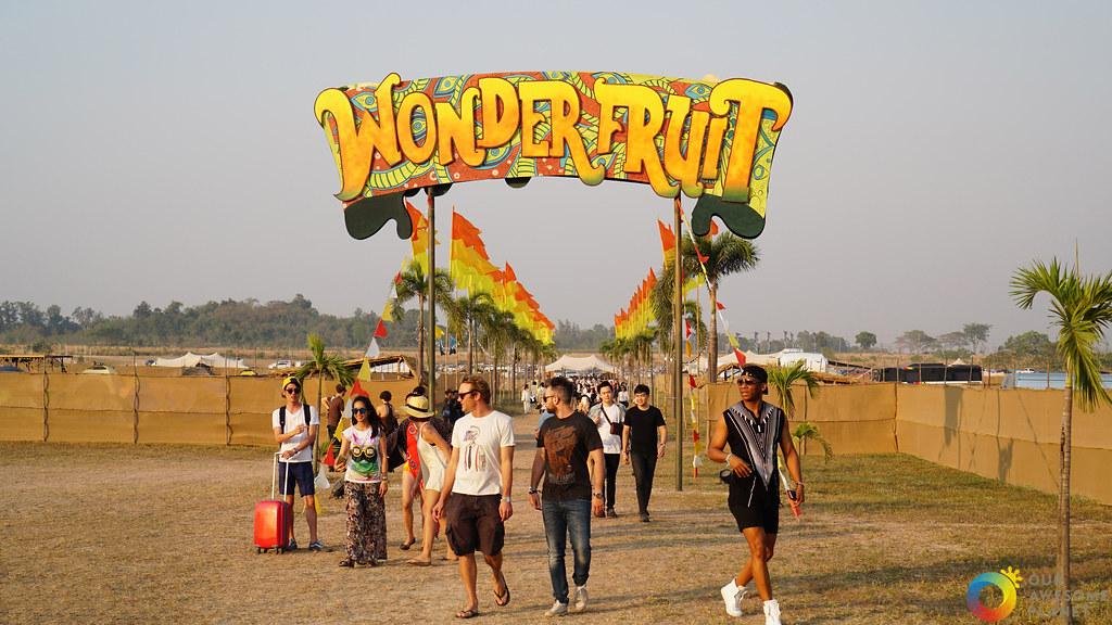 Wonder 42