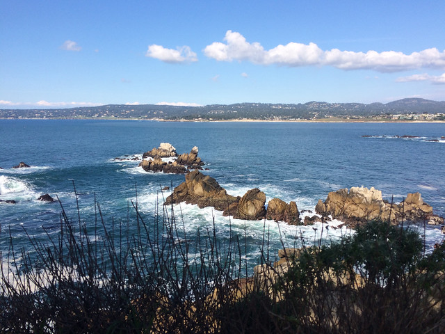 Overlooking Whaler's Cove
