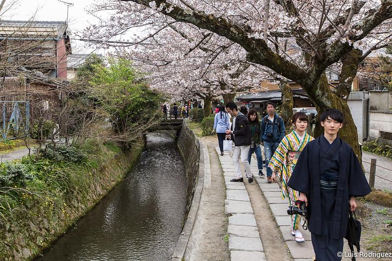 Paseo-Filosofia-Kioto-51