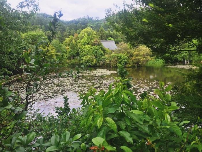 Lago en el Templo Ryoanji