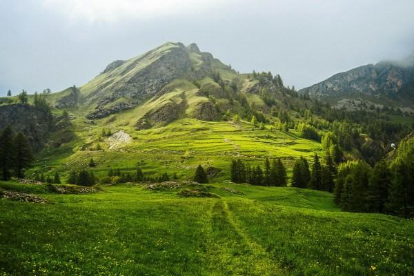 green landscape. page facebook