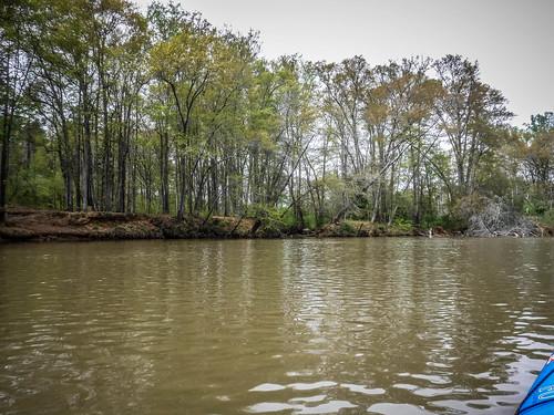 Saluda River at Pelzer-80