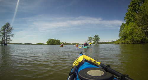 Paddle to Church Island with the Tri-County Blueways Paddlers-089