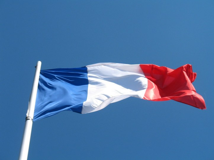 Image result for french flag