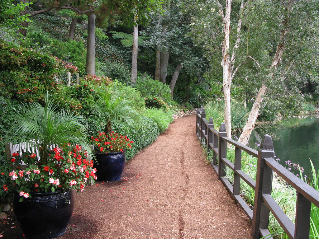 meditation pathway