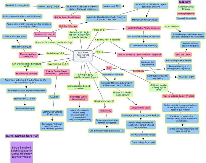burns nursing care plan concept map | this is what this seme… | flickr