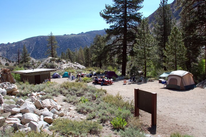Spacious Campground - Photo by Peyri Herrara