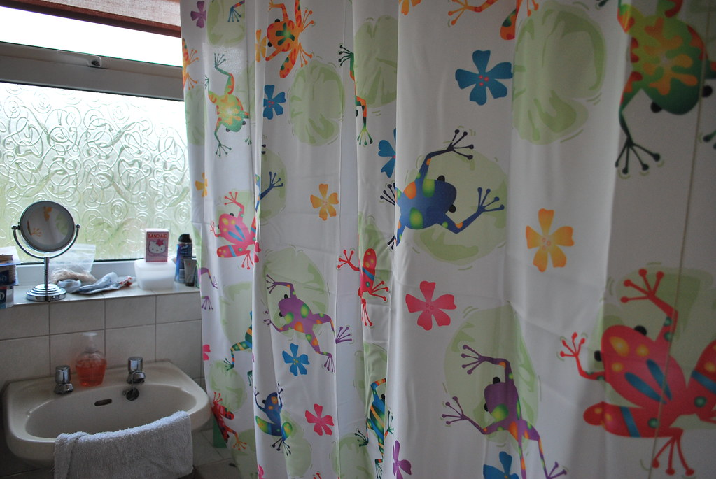 Psychodelic Frog Shower Curtain I Replaced The Kitty Cat S Flickr