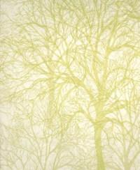 Modern wallpaper: Tree print by Graham & Brown   Detail of ...