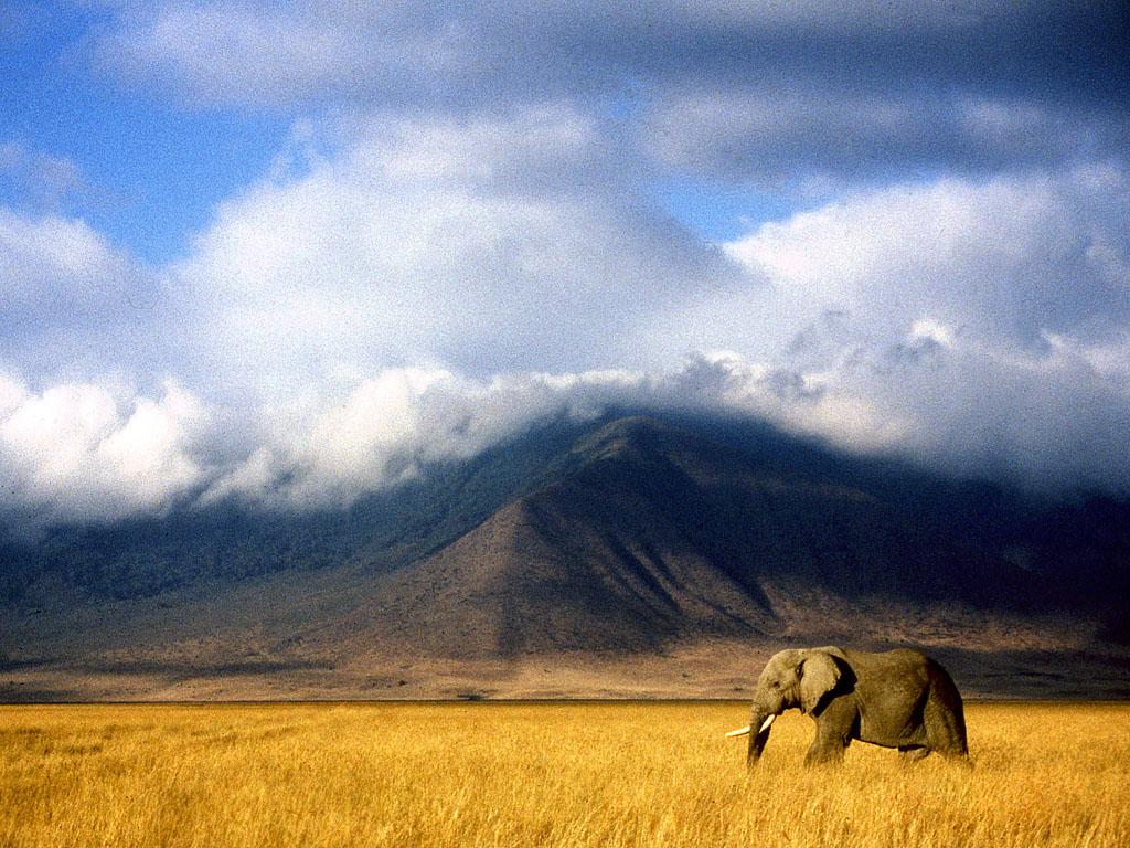 Africa Map 3d Wallpaper Ngorongoro Crater Flickr