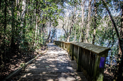 Old Santee Canal Park-39