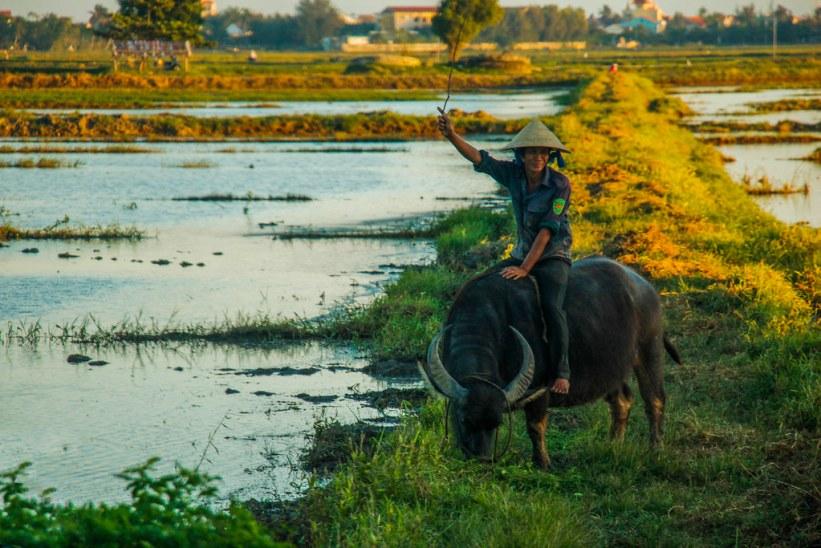 rejs på egen hånd i Vietnam
