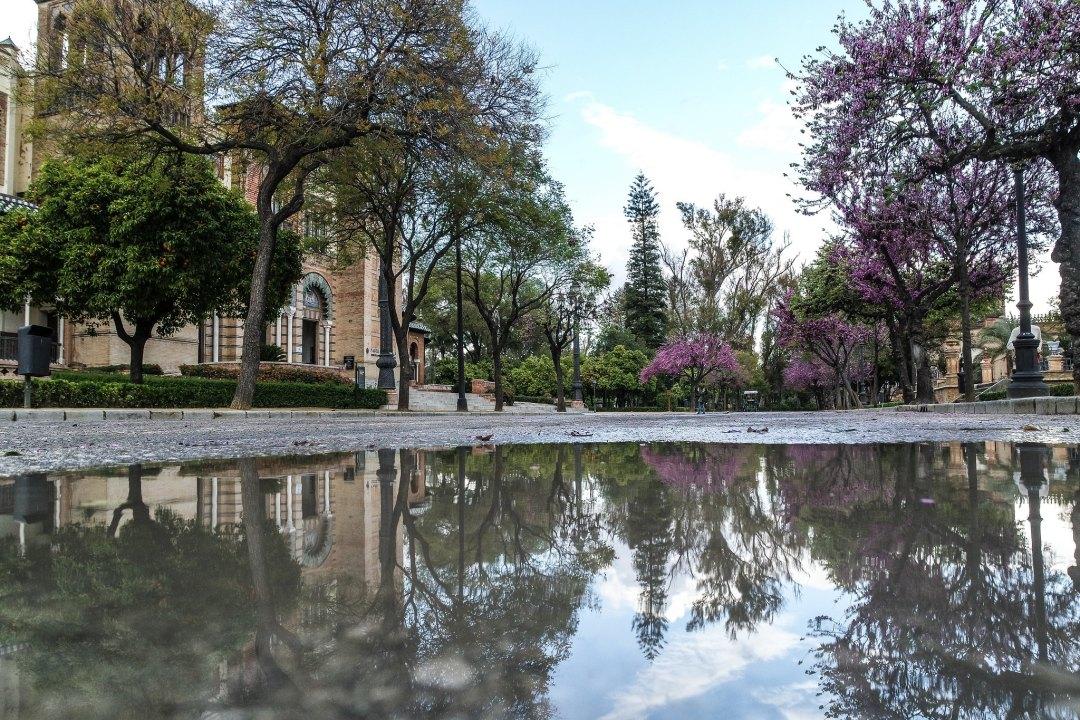 Parco di Maria Luisa (Siviglia)