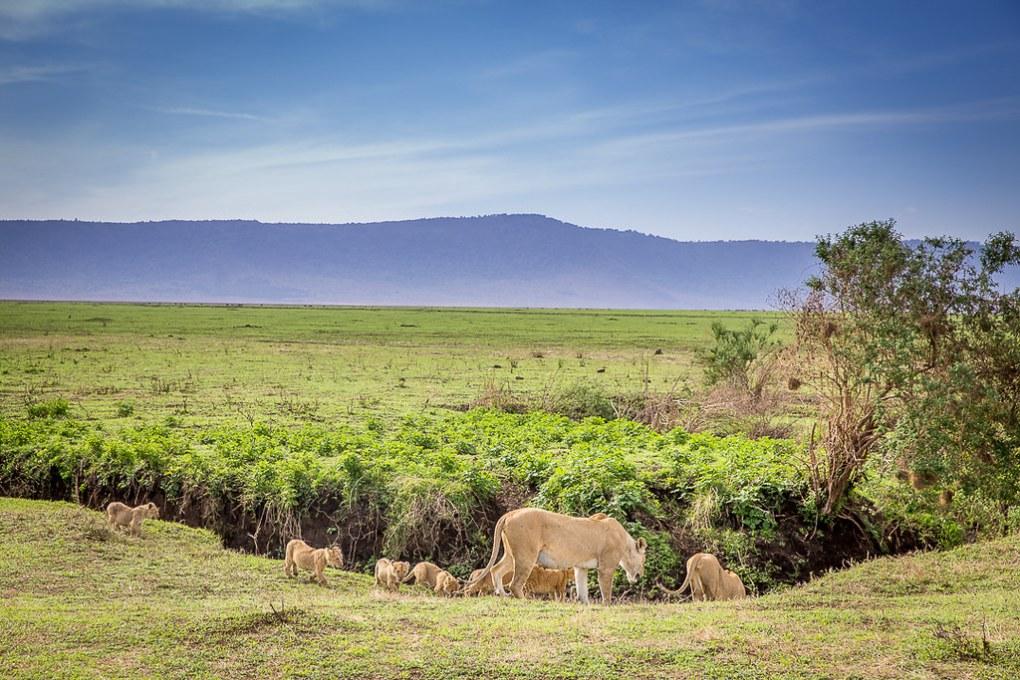 IMG_6625_Cape-to-Nairobi