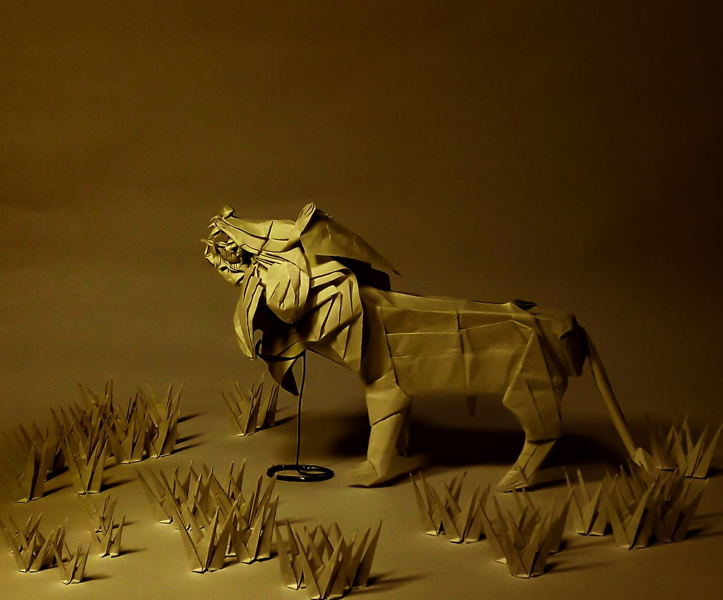hight resolution of  lion diagram test folded by son byung hoon by green cube