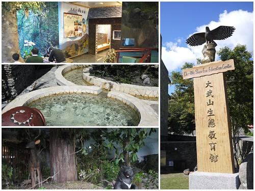 臺東太麻里景點金崙溫泉大武山生態教育館page   paulyearkimo   Flickr