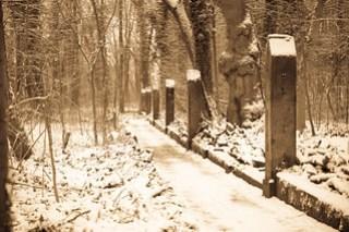 Bienert-Wanderweg
