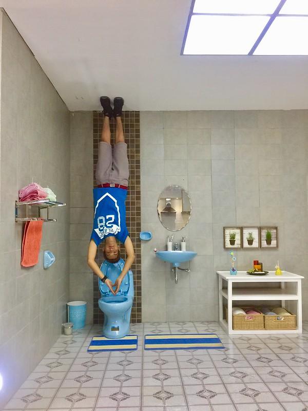 Upside Down Museum Toilet
