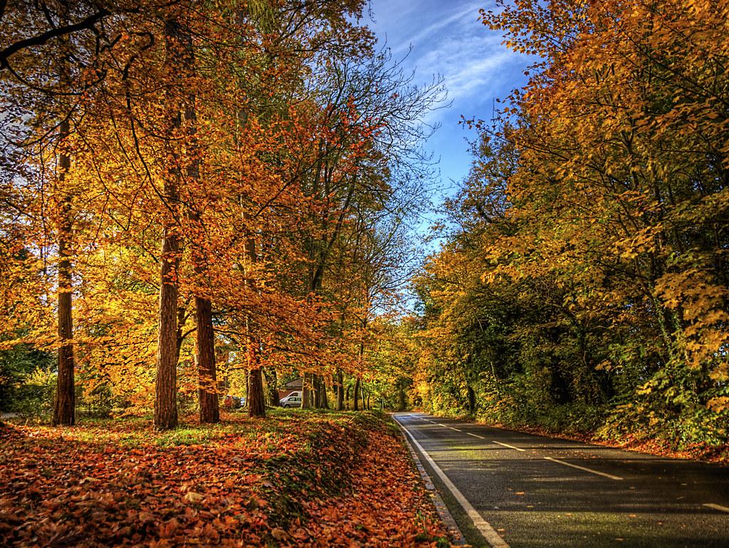 New England Fall Foliage Desktop Wallpaper Winchester Autumn Colour The Autumn Colour Shows On The