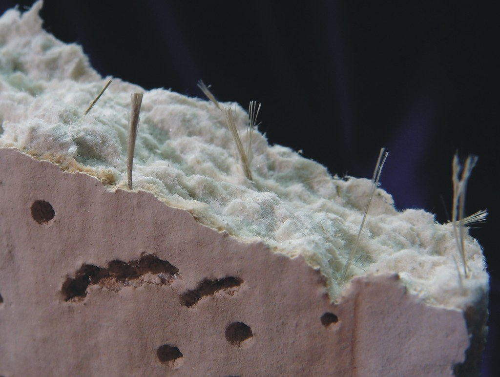 Amosite Fiber Bundles in Asbestos Ceiling Tile  Closeup