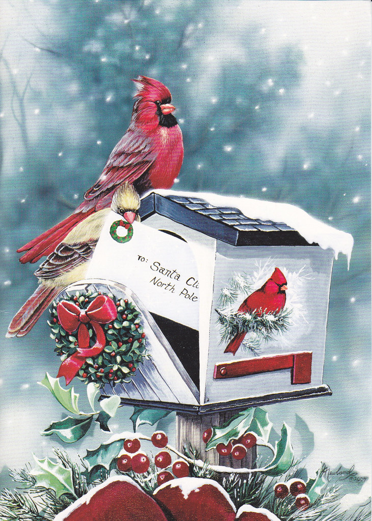Christmas Mailbox Cardinals Card 2010 Christmas Card RR