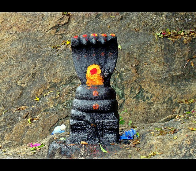 Snake God  Palani is home to one of the most sacred shrines  Flickr