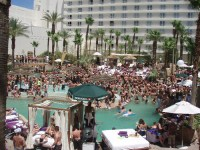 Rehab Sunday Pool Party