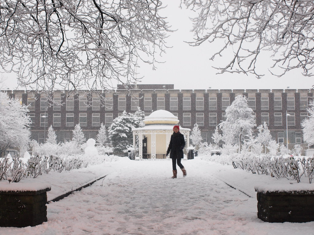 Abercromby Square  Everyone left the university early