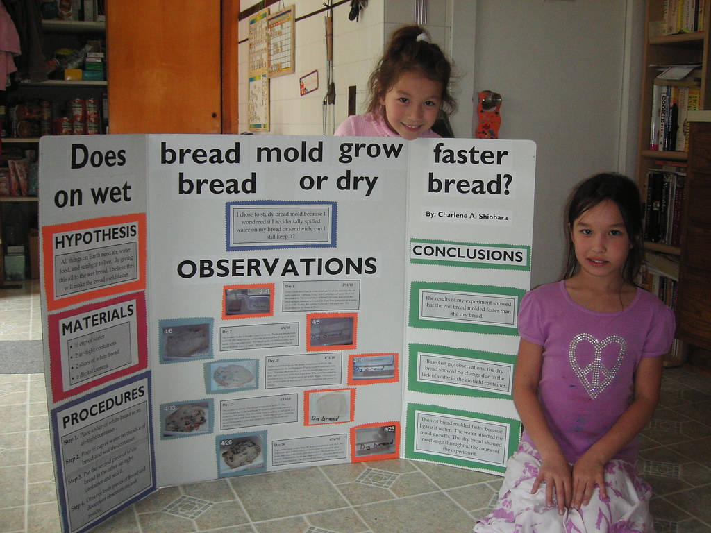 Charlie S 4th Grade Science Project