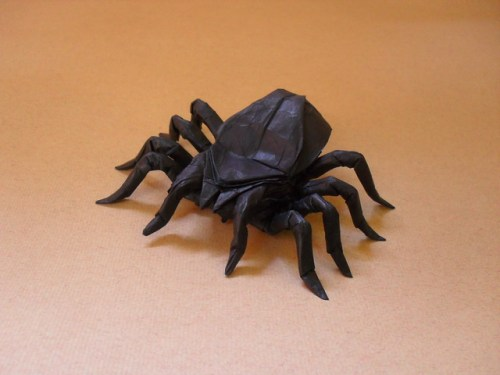 Origami Insects 2 Tarantula Origami Tutorial Lets Make It
