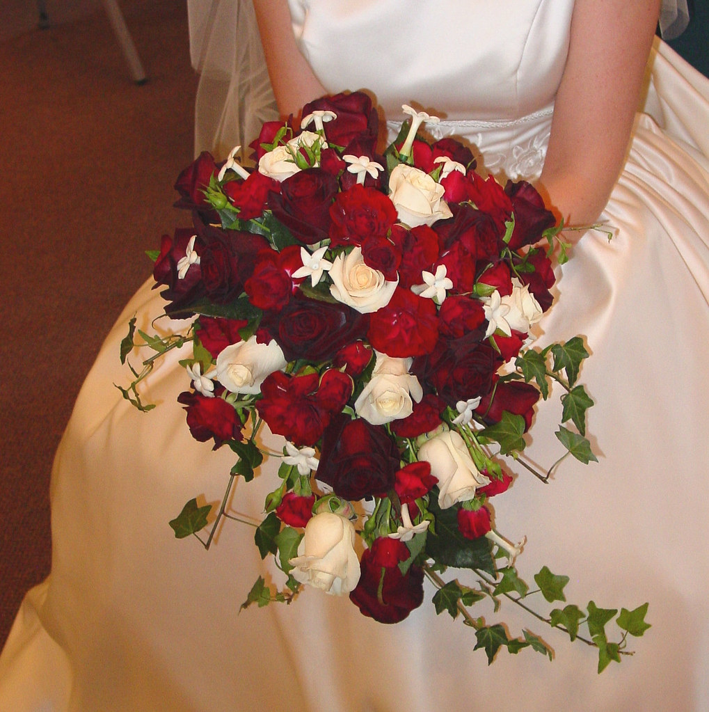 Deep red and Ivory rose cacade bridal bouquet  This