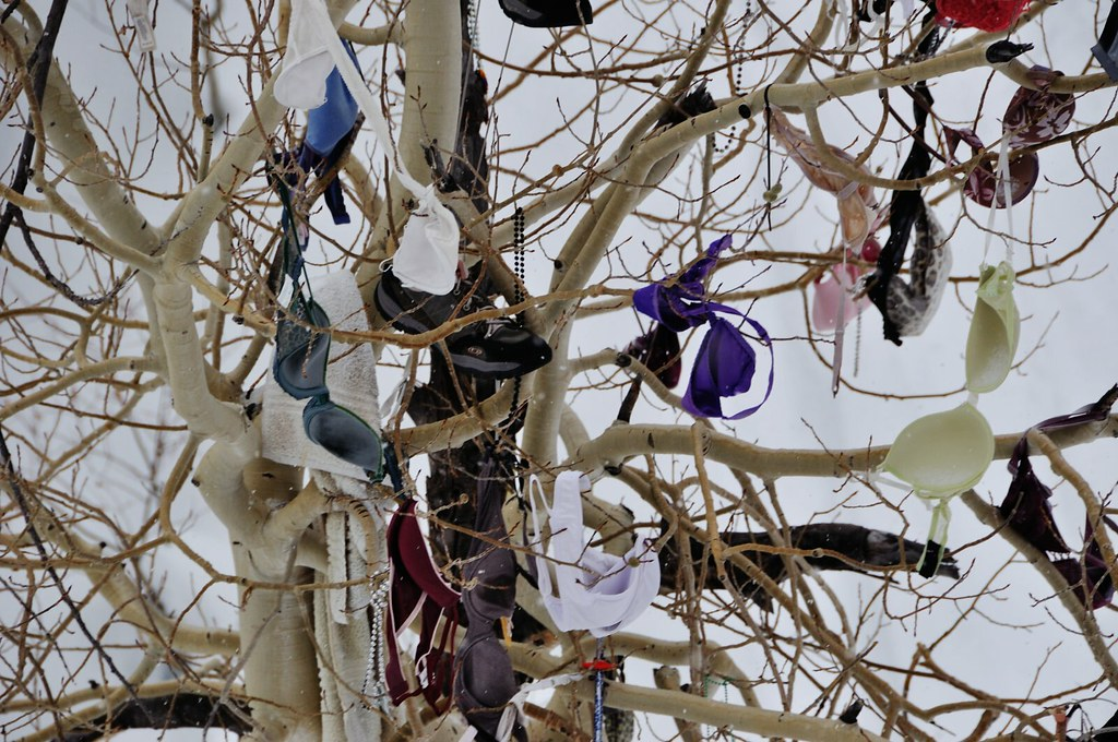 Alta Bra Tree  For some reason bras and beads are left in