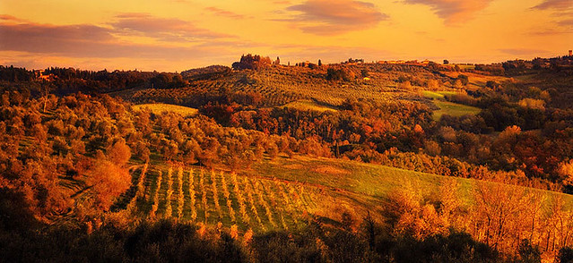 Wine 3d Wallpaper Sunset Over Rolling Tuscan Hills Villa Vineyard Www