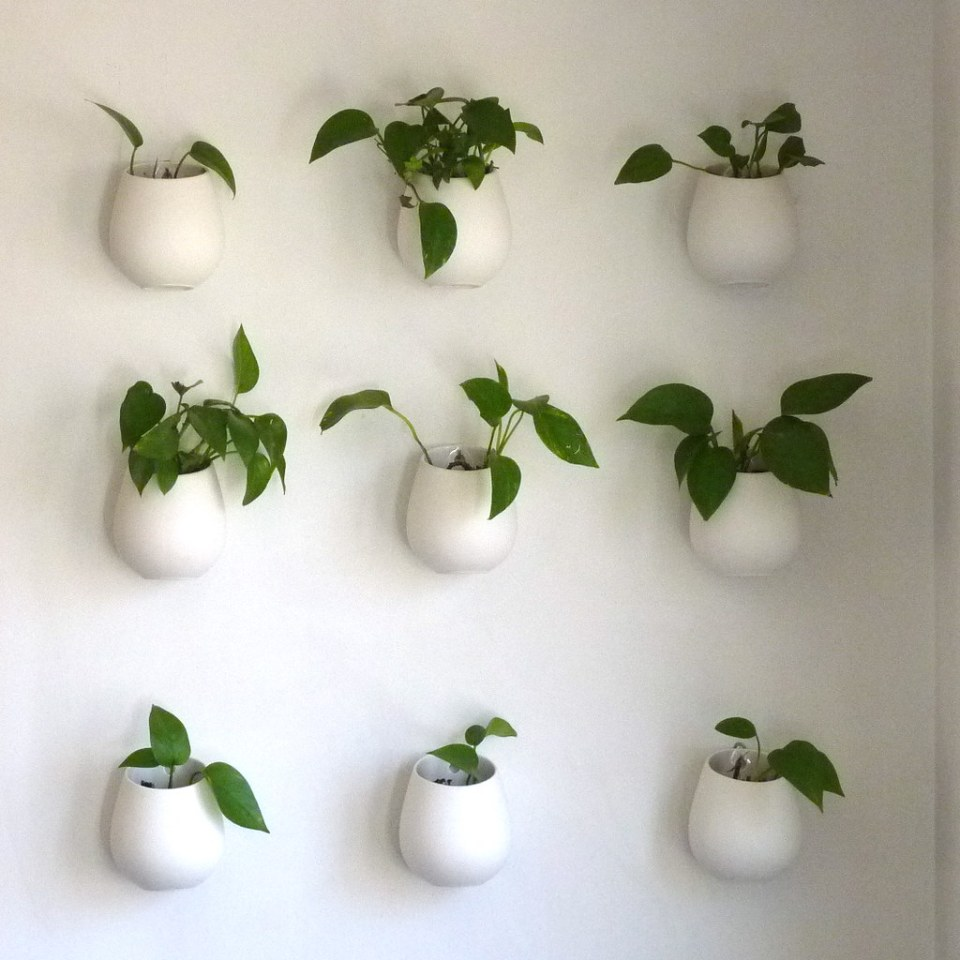 Image result for Pots on the wall flickr