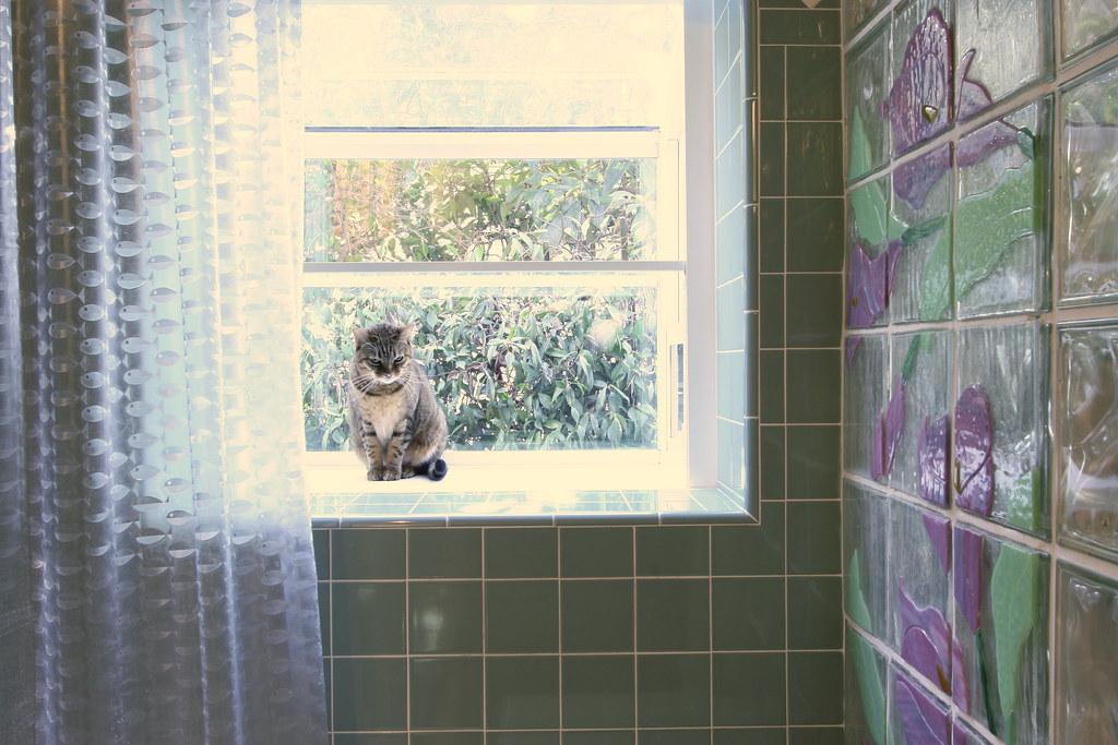 Bathroom Tile at Window Sill  Bathroom Remodel